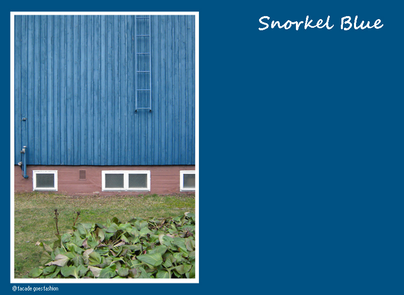 Petrol Blue wooden wall Pantone 2016 Snorkel Blue