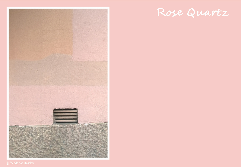 Pink wall Pantone 2016 Rose Quartz