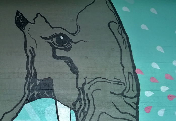 Norsun silmä Myyrmäki
