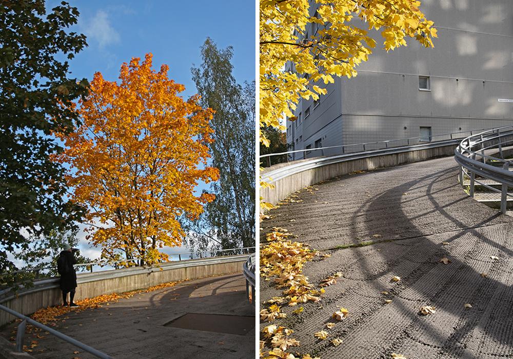 Kuvapari: Toisessa kuvassa kirjoittaja valokuvaa ja toisessa hänen ottamansa valokuva ajorampista.